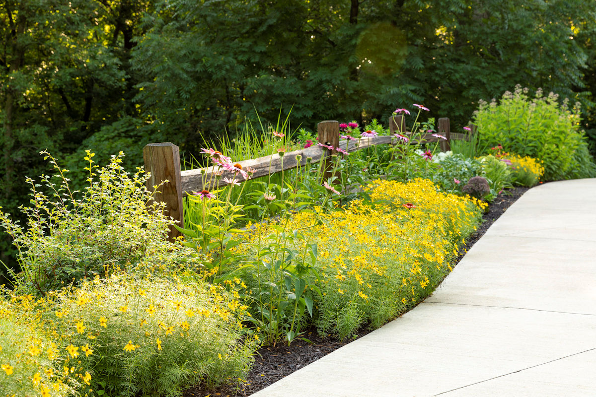 Hamptons Charm sidewalk plantings